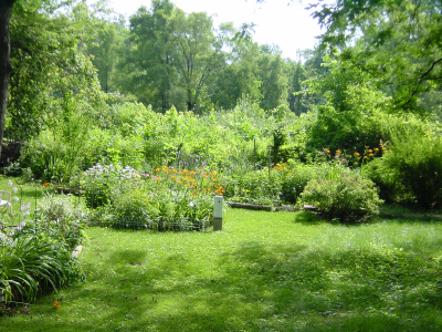 Do-it-yourself natural garden – Tips for landscaping